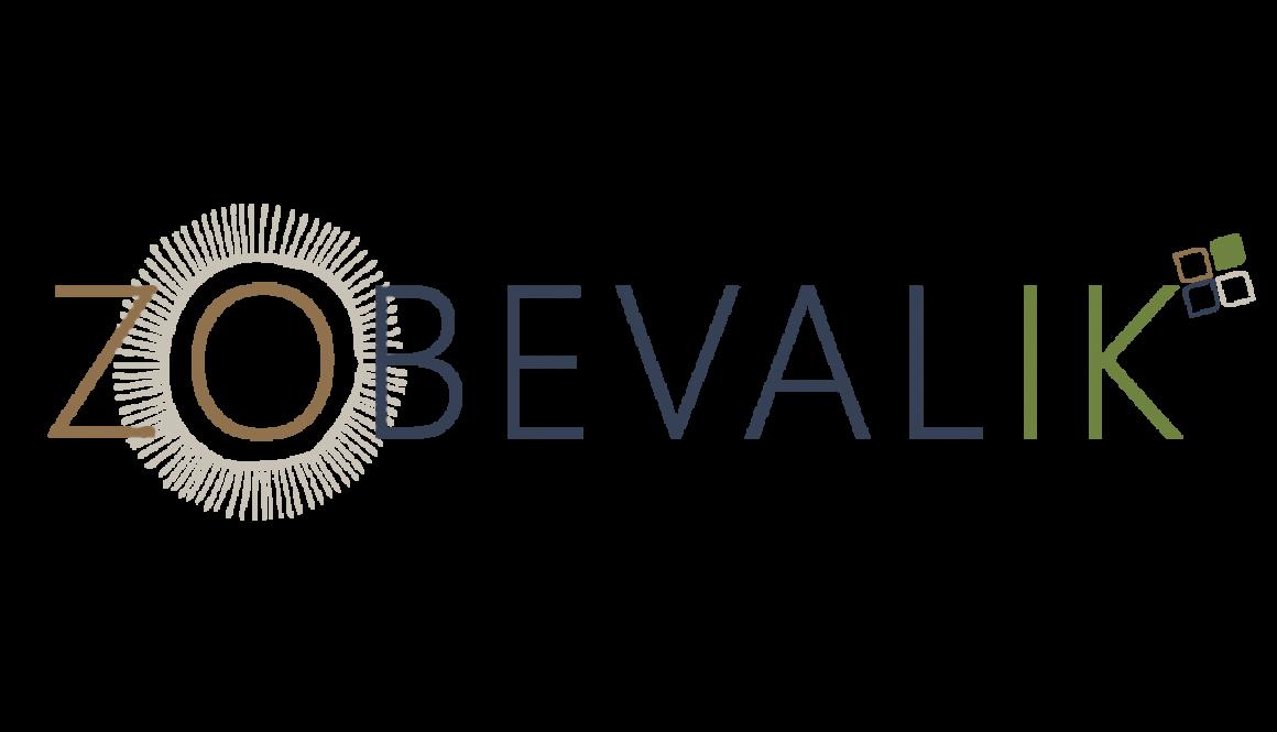 Logo ZO BEVAL IK.png